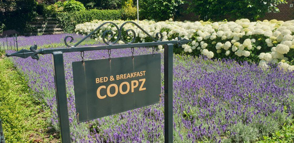 Bed & Breakfast Coopz